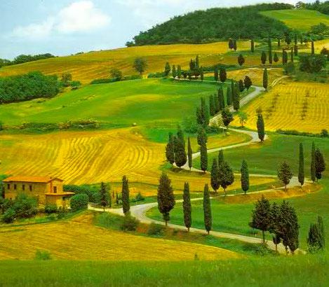 Egidio Borri, week end studio in fattoria