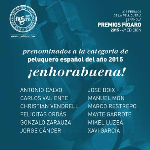 Premios Fígaro 2015