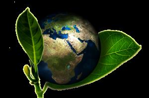 globelife - l'oreal ecosostenibile